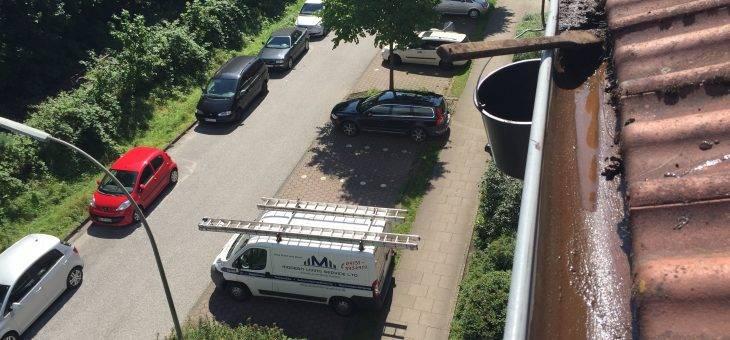Dachrinnenreinigung in Seiltechnik vom Dachausstieg